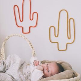 Cactus en tricotin de Maminébaba